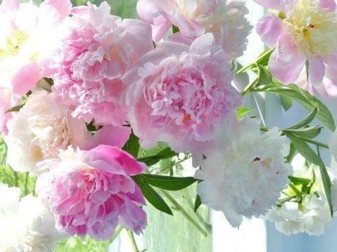 Красивые декоративные цветы своими руками