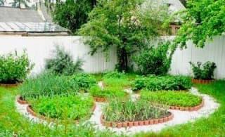Красивый огород. Грядки для настроения.