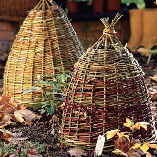 Как сплести великолепную корзинку для укрытия растений на зиму