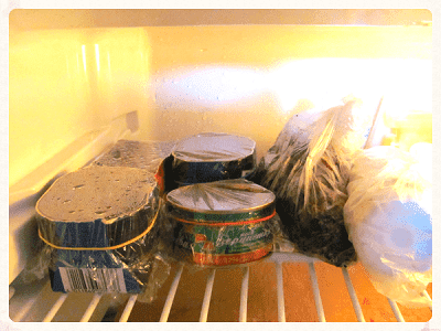 Стратификация семян в домашних условиях.