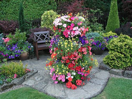 Воспользуйтесь однолетними вьющимися растениями для дачи