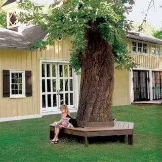 Удобная скамейка вокруг дерева своими руками