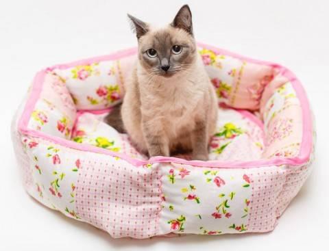 Как сшить красивую и удобную лежанку для любимого котика