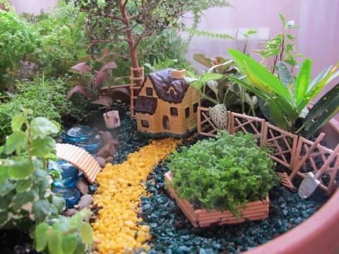 Домашний мини-сад своими руками